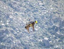 美国用直升机救援受伤马 警察兽医配合救援