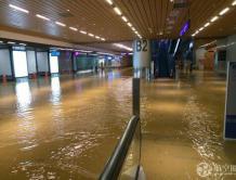 """一场大雨台湾桃园机场成""""海港"""" 超200航班受影响"""