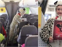 """红航空姐变身""""老虎"""" 向野生动物非法买卖说不"""