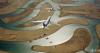 为了庆祝阿联酋建国47周年,阿联酋航空、阿提哈德航空、flydubai和Air Arabia与阿联酋空军骑士特技飞行表演队2018年12月2日天上演了一场精彩的编队飞行,场面壮观,非常震撼。
