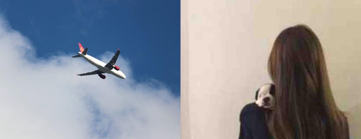 吉祥航空一名飞行员散发前女友不雅照  已被停飞